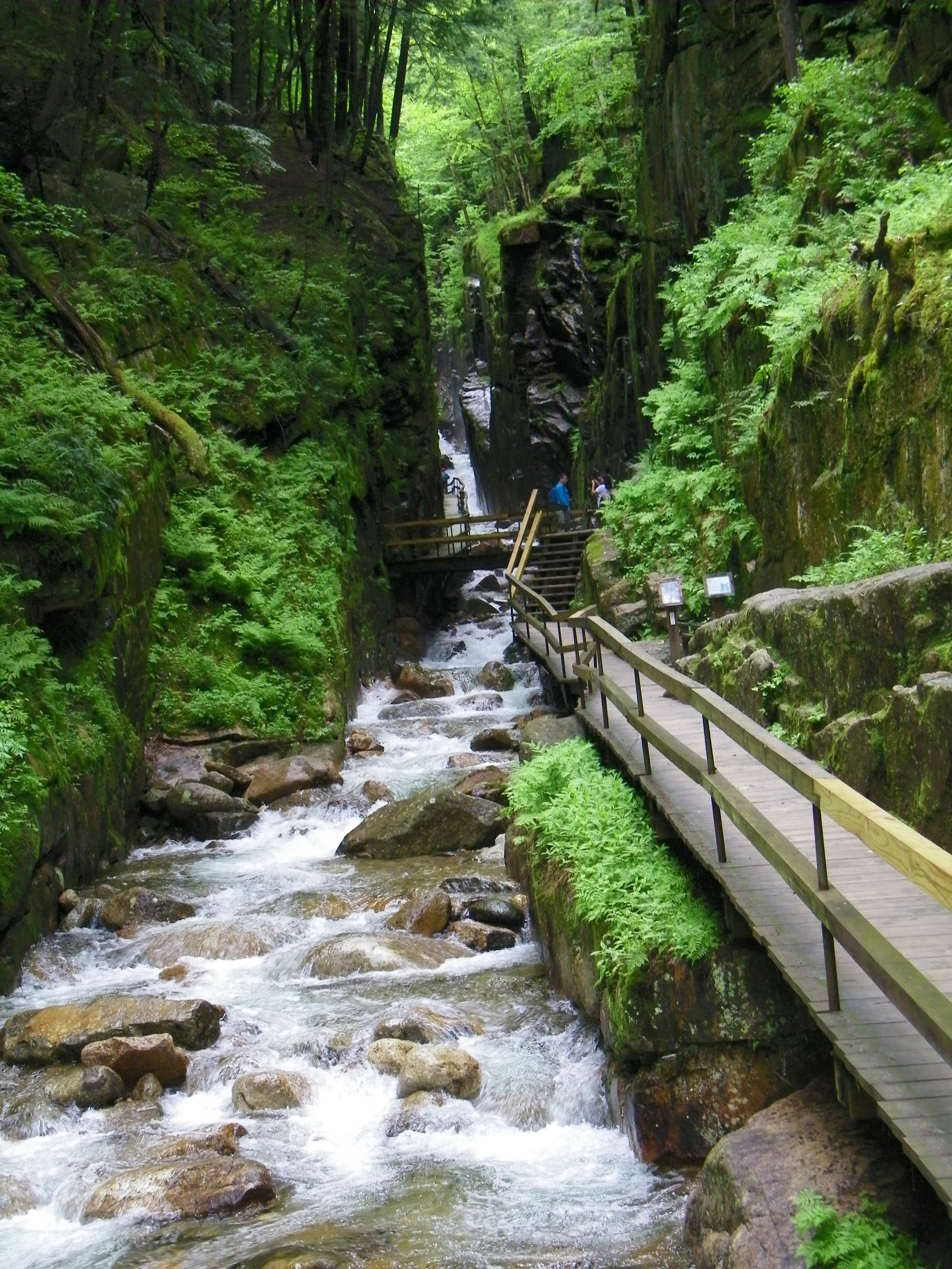 Franconia Notch State Park, north of Lincoln, NH