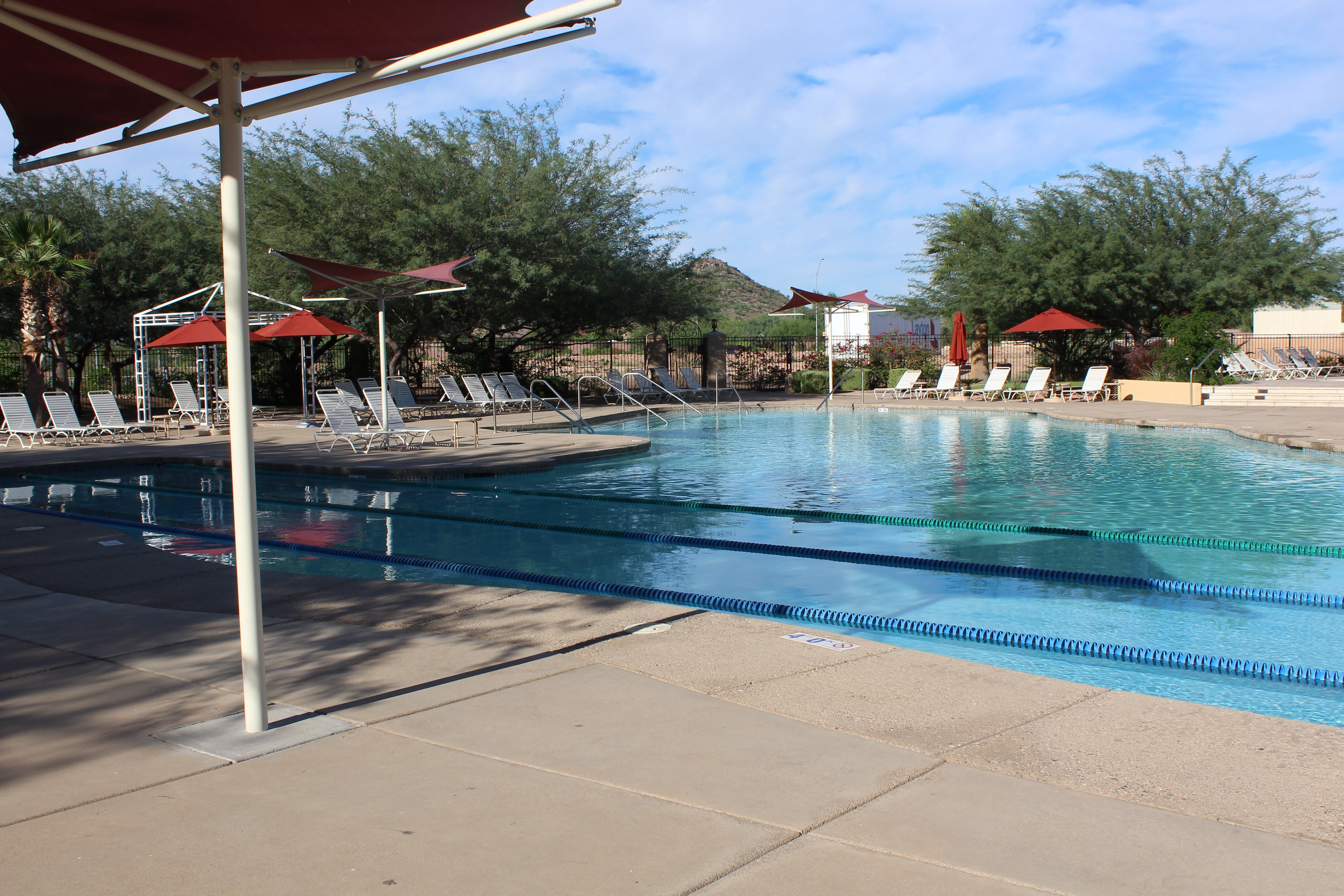 Cibola Vista Resort Pool